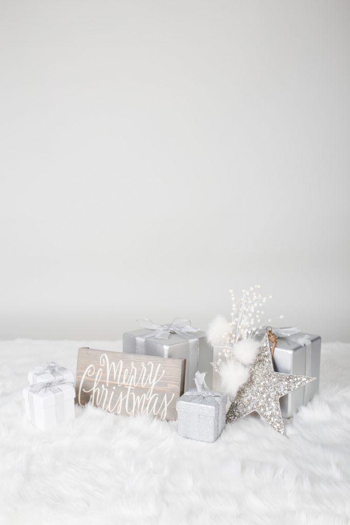 Holiday Mini Sessions 2021